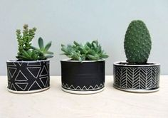 Cactus and succulents in adorable black chalkboard pots with hand drawn flair DIY Cacti And Succulents, Planting Succulents, Potted Plants, Garden Plants, Indoor Plants, House Plants, Planting Flowers, Succulent Planters, Plant Pots