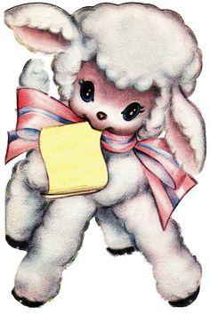 lovely lamb