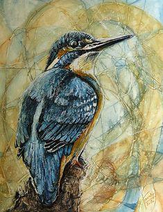 pucik / Krása nad hladinou Bird, Animals, Animales, Animaux, Birds, Animal, Animais