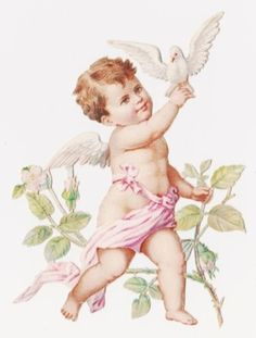 1 Victorian Die Cut Scrap, Cherub with Dove at Branches (12/09/2012)