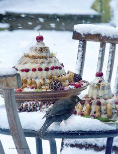 Blader hier door een impressie van het feestdagennummer van Landleven. Bird Seed Feeders, Diy Bird Feeder, Winter Fun, Winter Time, Cow Kitchen Decor, Homemade Bird Feeders, Love Bears All Things, Birds And The Bees, Garden Whimsy