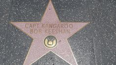 The Walk of Fame covers nearly a mile pavement and currently has over 2400 stars. The stars represent achievements in Film, TV, Radio, Theater and Music. Greatest Rock Songs, Captain Kangaroo, Chevy Chase, Charlie Sheen, The Better Man Project, Classic Songs, Johnny Cash, Hollywood Walk Of Fame, Freddie Mercury