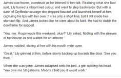 James and Lily - The 7th Years Boys Dormitory - The Marauders part 4/4