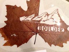 Beautiful leaf cutting by Spanish artist Lorenzo Duran for the Americas Latino Festival 2013, Boulder, Colorado.