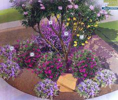 Cozy corner garden plan by Lowes: (A) Desert Willow (B) Texas Sage (C) Esperanza (D) Dwarf Ruellia (E) Autumn Sage