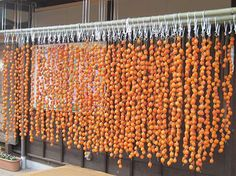 Dried persimmon Nagano Japan
