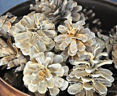 Soak pine cones in bleach for 15 minutes, rinse, and let dry for a few days..... Sprinkle with white glitter!