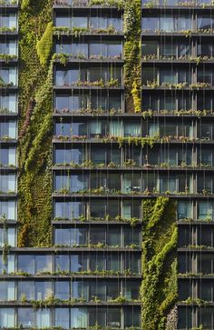 Vertical gardens at the One Central Park, Chippendale, Australia designed by Jean Nouvel Architect
