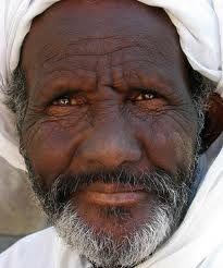egito é um país africano com cultura arabe.
