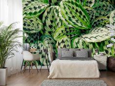 """Wallpaper """"Green Calathea"""" #wallpaper #wallpapers #green #floralmotiv"""