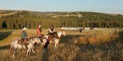 Let the never-ending scenery inspire you towards adventure at Grasslands National Park National Parks, Scenery, Canada, Inspire, Adventure, Places, Travel, Viajes, Landscape