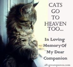 This reaches into all of us who have lost our special babies.