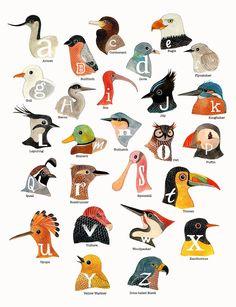 # birds, alphabet, illustration, painting, water color So cool! Bird Illustration, Watercolor Illustration, Blog Art, Bird Theme, Grafik Design, Bird Feathers, Beautiful Birds, Pet Birds, Illustrators