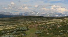 Pilgrimsleden_Dovrefjell