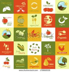Organic Icons Set - Isolated On Background - Vector Illustration, Graphic Design Editable For Your Design