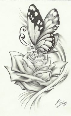 butterfly pencil drawing, if it were a dragonfly it would be perfect...