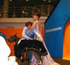 #Pets #fashionshow at #Stockmann. #paronedesign #dogsrug #eveningdress #InkaKorhonen #Hermanni #greatdanesh
