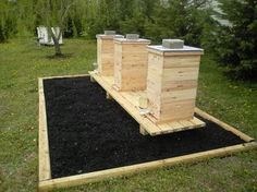 Evans cedar bee hives: I wonder if this helps deter wax moths? Bee Hive Stand, Wax Moth, Hives And Honey, Honey Bees, Buzz Bee, Raising Bees, Bee Boxes, Backyard Beekeeping, Mini Farm