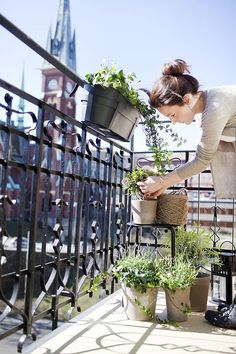 Dreaming of an herb garden on a balcony overlooking an amazing view!