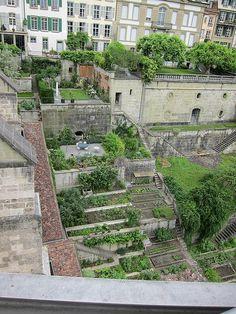Urban terrace gardens in Geneva, Switzerland