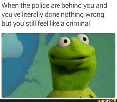 funny, lmao, meme, memes, relatable