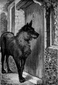 grimm fairy tale story wolf illustration - Google Search