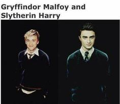 OMG! Harry in Slytherin and Malfoy in Gryffindor