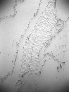 Study on the Manhattan grid as a rhizome