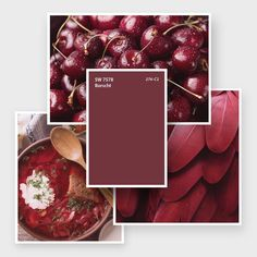 """Sherwin-Williams on Instagram: """"Beet those end-of-winter flurries with our scrumptious March Color of the Month, Borscht SW 7578. #march #homedecor #interiordesign…"""" March Colors, Red Paint Colors, End Of Winter, Borscht, Beets, Interior Design, Instagram, Home Decor, Nest Design"""