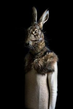 Miguel Vallinas Prieto's bizarre animal portraits are bold contemporary artworks perfect for the home office. Animal Masks, Animal Heads, Robot Animal, Animal Fur, Univers Parallèle, Animal Portraits, White Rabbits, Bunny Rabbits, London Art Fair