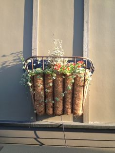 Reuse of iron horse-feeder into lovely wall planter!