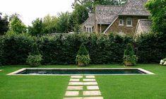 Ronald Holbrook:  Garden 6