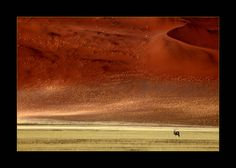 VE- Gemsbok by Suppi-lu-liuma / Sossusvlei , Namibia