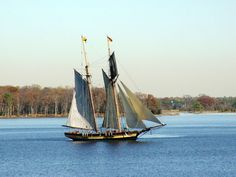 Tall ship to dock at CBMM - The Star Democrat - Easton, Maryland: Life