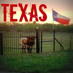 One of my favorite photos from Candypo.com !! #Texas