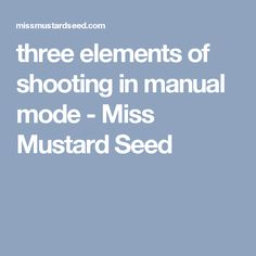 three elements of shooting in manual mode - Miss Mustard Seed