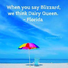 Florida                                                                                                                                                                                 More