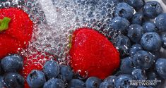 Rinse your berries just before eating them instead of when you get home from the store. Washing and storing can increase spoilage and mold. How To Wash Vegetables, Fresh Fruits And Vegetables, Water Recipes, Clean Recipes, How To Clean Strawberries, Storing Fruit, Vegan Meal Plans, Diet Plan Menu, Clean Eating Diet