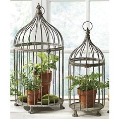 Decorated Bird Cages | ... | Shop interior_design, home | Kaboodle - decorative bird cages