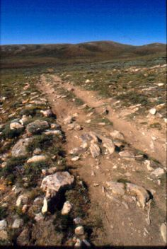 Mormon trail wagon ruts still visible today in Wyoming. Grew up in Wyo.and have seen this but was always told it was the Oregon Trail. Pioneer Trek, Pioneer Day, Mormon Trail, Mormon Pioneers, Thing 1, Le Far West, Interesting History, Old West, Wyoming