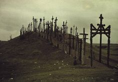 A view of a walkway lined with crucifixes in Lithuania, Russia. Photograph by Gustav Heurlin