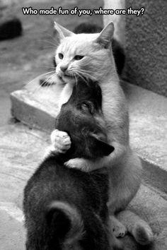 Protección entre hermanos :)