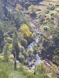 Parque Nacional da Serra da Estrela (Beira Alta) is het hoogste gebergte van Portugal met als hoogste top de 'Torre' (1995 m.). Het is een ruig en kaal gebied met een prachtige flora, stuwmeren en de bergmeertjes. Op veel plekken liggen bergdorpjes verscholen. Vanaf het pittoreske Manteigas (720 m.) kun je naar Poço do Inferno, een waterval die vanaf een klif omlaag stort. De kans is groot dat je een herder tegenkomt met zijn kudde.