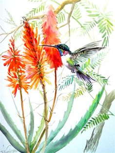 Buy Original Art by Suren Nersisyan Hummingbird Drawing, Watercolor Hummingbird, Owl Watercolor, Watercolor Animals, Watercolor Flowers, Watercolor Paintings, Watercolours, Bird Drawings, Bird Art