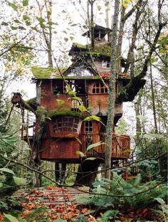 Redmond Treehouse - photo by machumbi