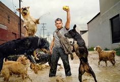Cesar Millan with his Dogs, South Central Los Angeles, CA | From a unique collection of portrait photography at https://www.1stdibs.com/art/photography/portrait-photography/