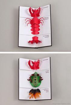Carnaval Animal Pop-Up - Moon Picnic Origami Paper Art, Diy Paper, Kirigami, Paper Design, Book Design, Arte Pop Up, Paper Pop, Paper Engineering, Pop Up Cards