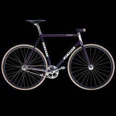 scattofisso20141200_purple.jpg 1200×1200 pikseliä