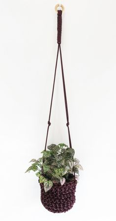 Small Solid Burgundy Plant Hanger, Hanging Planter, Macrame Plant Hanger, Plant Holder, Plant Accessories, Garden Decor, Apartment Decor by knitknotsupplyco on Etsy https://www.etsy.com/listing/493110695/small-solid-burgundy-plant-hanger