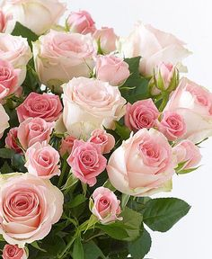There is no doubt that flowers can help you expressing your hidden love, emotions and feelings for your loved one. If you want to make your husband feels positive about you, it is time to send him flowers online. Yellow Roses, Pink Roses, Pink Flowers, Wallpaper Nature Flowers, Rose Wallpaper, Beautiful Flower Arrangements, Floral Arrangements, Beautiful Roses, Beautiful Flowers
